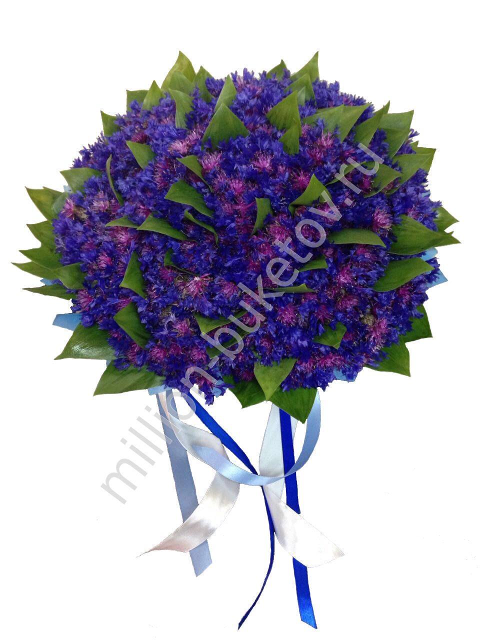 Купить цветы васелькове доставка цветов по юрге