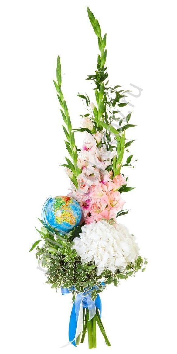 Гладиолусы цветы фото букеты