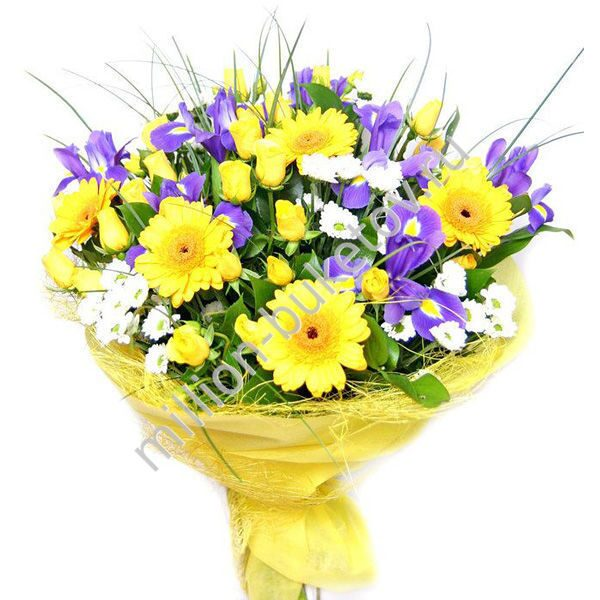 Фото букет хризантема