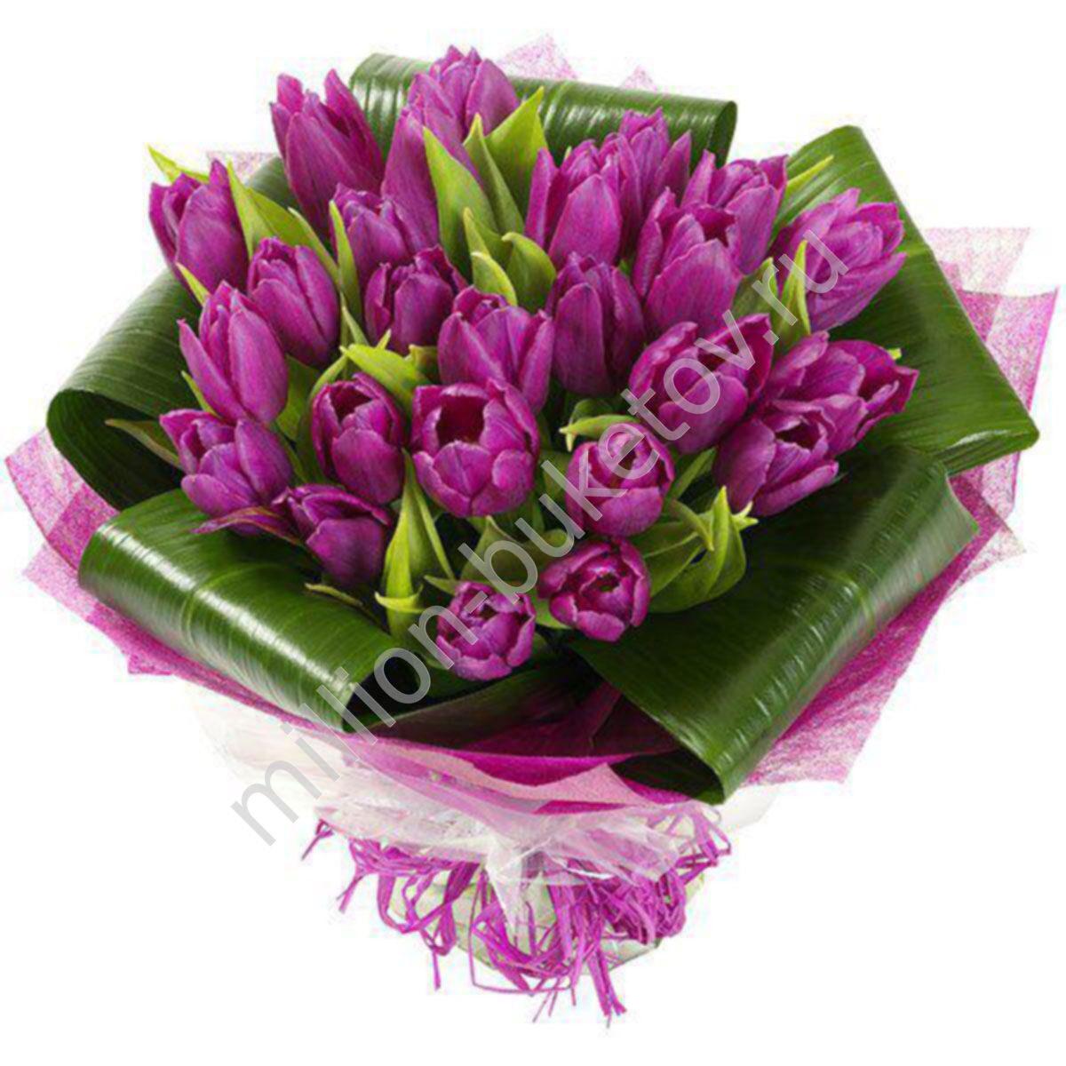 Тюльпаны цена цветы