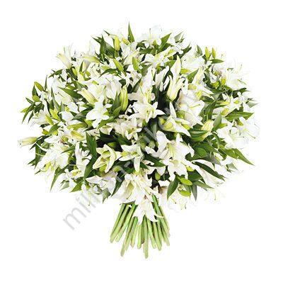 Москва купить лилии