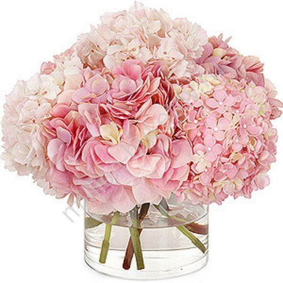 Букет гортензия купить в москве, цветы учителям на последний звонок