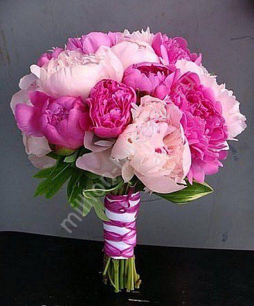 pioni-buket-tsena-priroda-tsveti-buket-iz-roz